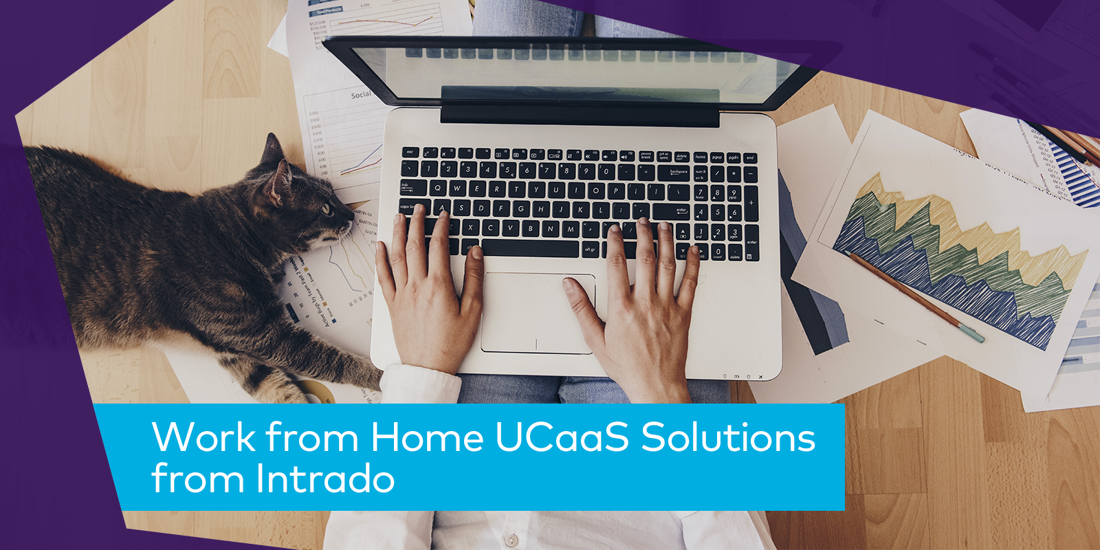 Image: Work from Home UCaaS Solutions from Intrado